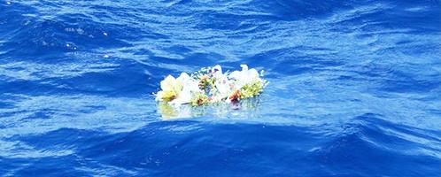 火葬式+海洋散骨プラン